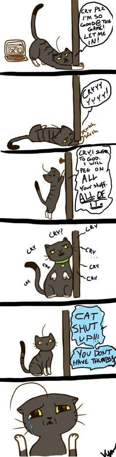 Cry's cat