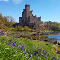"""Dunvegan Castle:This is Scotland (@this_is_scotland) on Instagram: """"#scotland is amazing! Tag #thisisscotland to get featured © @diane.max84"""""""