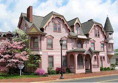 pink house, pink tree, pink shrub...pink