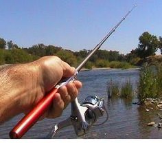 $20. Mini fishing rod. Those Sierra fish don't stand a chance with one of these bad boys.