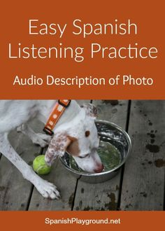 Easy Spanish listening practice with audio description of a photo of a dog. Kids listen and then talk about the picture using the questions that follow.