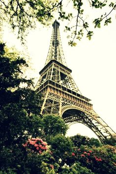 eiffle tower | france Paris: who does not fall in love with Paris once they've been there?