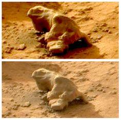 Iguana Found On Mars By NASA Curiosity Rover, 3 Photos, VIDEO, UFO Sighting News.  President Obama