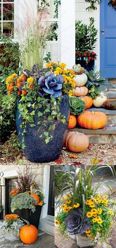 Beautiful Fall Planters for Easy Outdoor Fall Decorations 22 gorgeous fall planters for Thanksgiving & fall decorations: best fall flowers for pots, & great autumn planter ideas with mums, pumpkins, kale, & more! - A Piece of gorgeous fall plante Fall Flower Pots, Fall Flowers, Fall Planters, Outdoor Planters, Planters Flowers, Garden Planters, Fall Potted Plants, Geraniums Garden, Ivy Plants