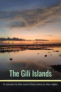 The Gili Islands are a group of 3 tiny islands – Gili Trawangan, Gili Meno and Gili Air – in Indonesia, near the coast of northwest Lombok Island. Characterized by sandy beaches fringed with palm trees, they're known for their coral reefs just offshore. . #lombok #indonesia #travel #traveling #giliisland #island #nature #bucketlist Travel Images, Travel Pictures, Cool Pictures, Travel Deals, Travel Tips, Adventure Time, Adventure Travel, Places To Travel, Travel Destinations