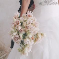 セルリアのみ20本ザックリ束ねたブーケ 別名blushing bride、頬を染めた花嫁。可愛い!ダイアナ妃のブーケにも使われたお花。 #flowers…