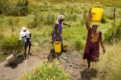 Patricia Mhike, Gladys Ngwenya and Blessing Shayanewako (left to right) from the Chaitemura Chavakuseva group fetching water for the field in the E Africa farming school, Wedza, Zimbabwe. (2011, Photo © Jon Macpherson/ Progressio)