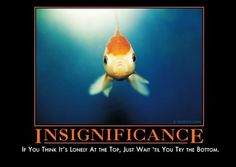 """Excuse me while I go crawl under my covers and <a href=""""https://despair.com/collections/demotivators/products/insignificance"""" target=""""_blank"""">cry</a> myself to sleep."""