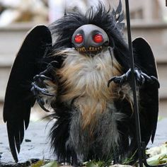 1000 Images About Cryptid Creatures On Pinterest