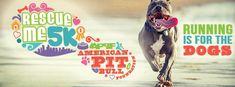 Beginner 5k Training Plan, Running Buddies, American Pit, Service Dogs, Training Your Dog, How To Run Longer, Animal Rescue, Pitbulls, Pets