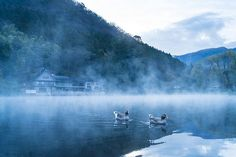 温泉だけじゃもったいない!大分の人気観光スポットランキングTOP40 | RETRIP[リトリップ]