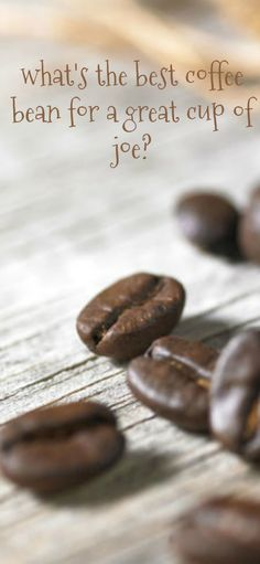 what's the best coffee bean for a great cup of joe?