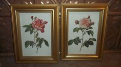 Vintage Framed Botanical Rose Floral Wall Art by ATokenOfLove, $25.00 Floral Wall Art, Beautiful Wall, Vintage Frames, Objects, Wall Decor, Make It Yourself, Art Prints, Unique Jewelry, Handmade Gifts