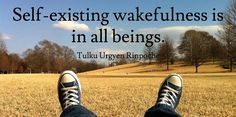 Self-existing wakefulness is in all beings. - Tulku Urgyen Rinpoche via www.retreat.guru #wakefulness #mindfulness #meditation #yoga #retreatguru