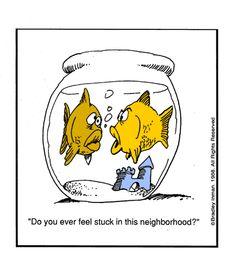 Ever feel stuck in your neighborhood?