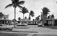 Photonegative of a postcard. Florida Images, Hollywood Florida, Chicago Photos, Old Florida, Image Title, Motel, Cabana, Street View, Places