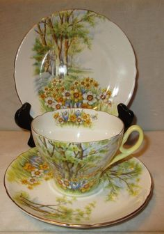 Shelley Daffodil Time Trio, Tea Cup, Saucer & Dessert Plate, No. 13370, England