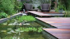 Gorgeous natural pool using plants instead of chemicals to clean and filter the water!