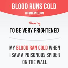 """""""Blood runs cold"""" means """"to be very frightened"""". Example: My blood ran cold when I saw a poisonous spider on the wall."""