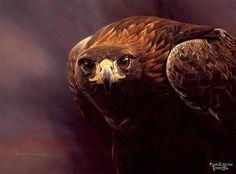 Alan M Hunt - Birds of Prey Paintings. Golden Eagle