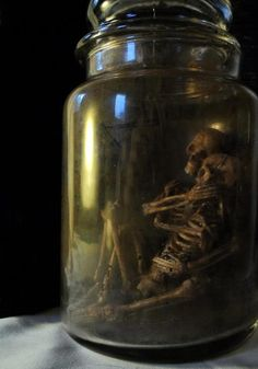skeleton couple snuggle in a jar