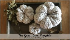 The Great Star Pumpkin is a free crochet pattern. It comes in three different sizes and is the perfect textured pumpkin for your fall decor. Crochet Star Stitch, Crochet Stars, Single Crochet Stitch, Double Crochet, Crochet Pumpkin, Crochet Fall, Free Crochet, Crochet Beanie Pattern, Crochet Patterns