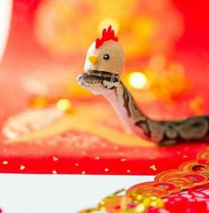 Snakes With Hats, Super Club, Cute Reptiles, Paws And Claws, Ball Python, Cute Funny Animals, Funny Jokes, Memes, Noodles