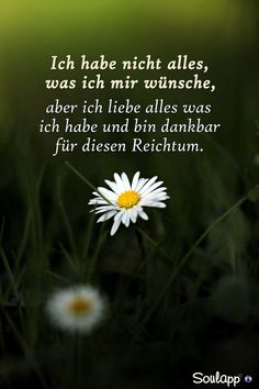 Ich habe nicht alles was ich will . - Words and Thoughts - Friendship Quotes Images, As Good As Dead, German Quotes, German Words, Albert Einstein Quotes, True Friends, Some Words, Best Quotes, Inspirational Quotes