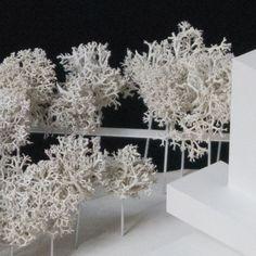 Modellbäume