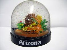 This is 2 lizards walking on rocks in the dessert. / Rose Blogs Snow Globes