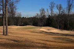 Golf in North Carolina at Southern Pines and Ballantyne Resort. Golf Course Reviews, Golfer, Golf Courses, Country Roads, Golf Course Ratings