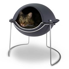 Super cute cat bed! Would love one!
