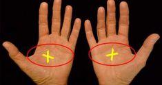 consejos – Consejos Saludable Fish Tattoos, Wolf, Youtube, Palm Reading, Palmistry, Health Tips, Destiny, Hands, Lyrics
