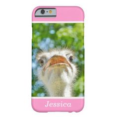 Shop Cute Funny Ostrich Girly Name Case-Mate iPhone Case created by stdjura. Iphone 5 Cases, Iphone 6, The Ostrich, Big Bird, Beautiful Birds, Colorful Backgrounds, Girly, Funny, Cute