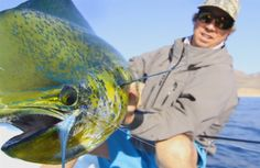While on a trip to chase rooster fish in the Sea of Cortez, these boys found their way into some some dorado on the fly! Fishing Videos, Sea Fish, Rooster, Journal, Boys, Journal Entries, Senior Boys, Sons, Journals