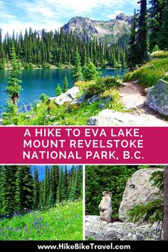 A Hike to Eva Lake, Mount Revelstoke National Park, BC - Hike Bike Travel Canadian Travel, Canadian Rockies, Camping And Hiking, Hiking Trails, Backpacking Tips, Camping Gear, Visit Canada, Canada Trip, The Great Outdoors
