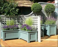 Lattice & pretty planter boxes