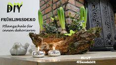 DIY Frühlingsdeko Pflanzschale für innen I voorjaarsbloemstuk I Spring C...