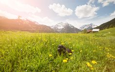 Time for a break by Florian Redlinghaus Mountains, Nature, Travel, Naturaleza, Viajes, Destinations, Traveling, Trips, Nature Illustration