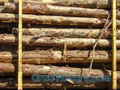 Tree stocks on train wagon close is a royalty free photo that you can download for free at GrabTexture.com. The image is categorized as Tree. The original image packed in a zip-file and has the following dimensions (Width x Height): 5152 px x 3864 px. The file size is: