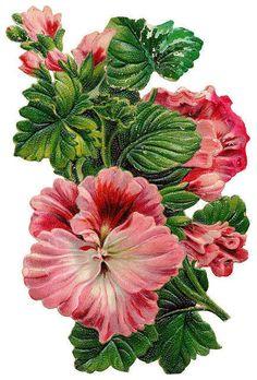 Flowers467