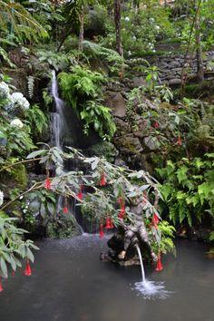 Jardim Tropical Monte Palace, Madeira