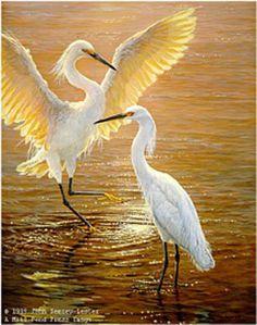 JOHN SEERY LESTER. Evenng Duet - Snowy Egrets