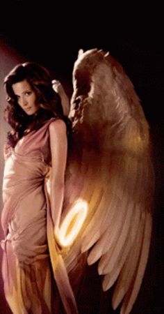 The perfect Fallen Angel Pretty Animated GIF for your conversation. Discover and Share the best GIFs on Tenor. Pretty Gif, Beautiful Gif, Gifs, Fallen Angel Wings, Seraph Angel, Sad Angel, Angel Artwork, Ange Demon, Angel Pictures