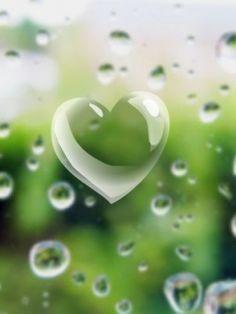 Bubble heart...