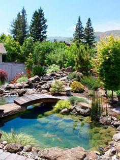 27 idéés pour le bassin de jardin préformé , hors sol + - jardin-bassin-construire-poissons