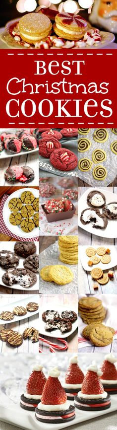 Get to holiday baking with these MUST try Best Christmas Cookies recipes featuring chocolate, peppermint, cinnamon and so many more festive holiday flavors! Best EVER Christmas Cookies recipes are perfect for an exchange with everything from easy cook Holiday Cookies, Holiday Baking, Christmas Desserts, Holiday Treats, Holiday Recipes, Christmas Recipes, Summer Cookies, Baby Cookies, Heart Cookies
