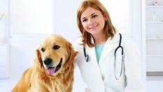 Trips to the vet can be expensive and most Americans cannot afford pet insurance, but RxCut strives to help you keep your pets healthy and happy! Present your RxCut card when filling your pet meds and let us take the stress off your wallet so you can focus on helping your furry or feathered friends heal!