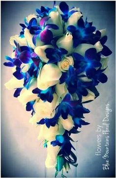 Beautiful blue and white