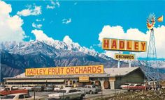 CABAZON CA Hadley's Fruit & Nut Orchards Roadside Palm Springs Highway Postcard - I remember from when I was a kid.